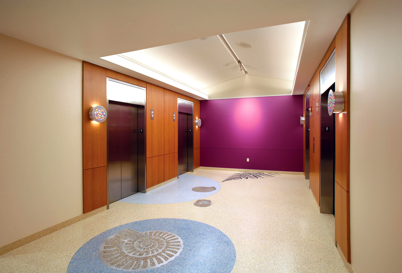 Terrazzo Flooring Installation Children S Hospital